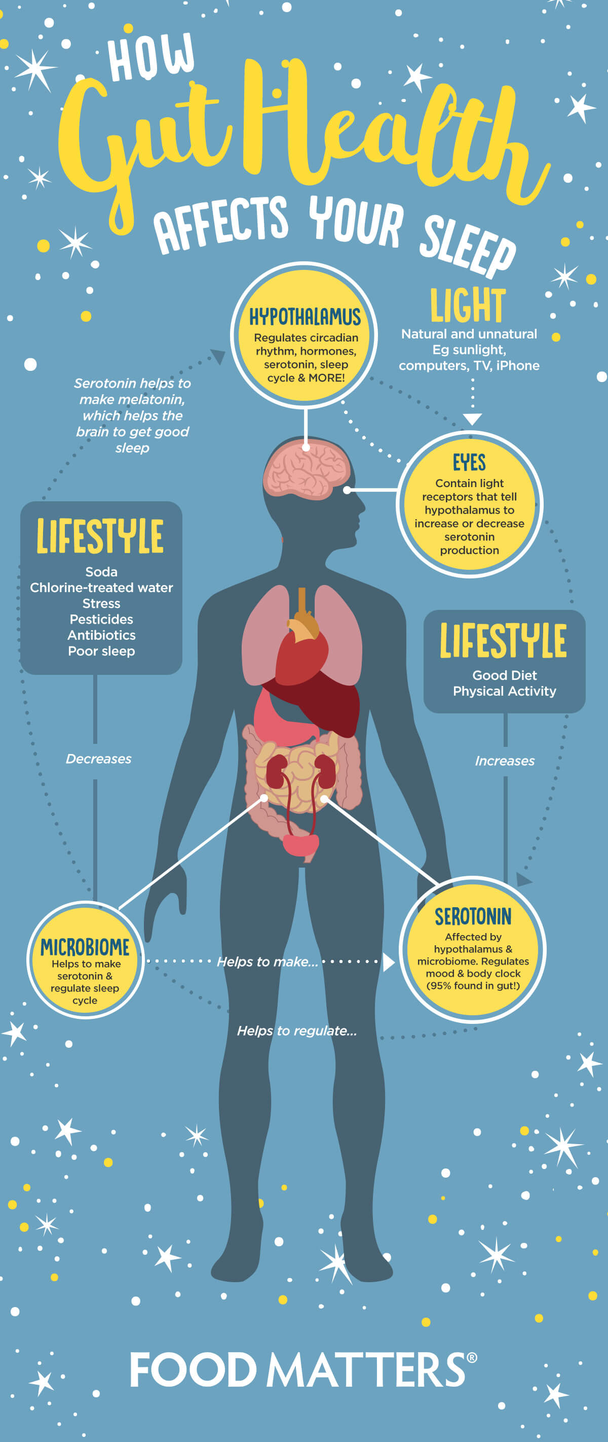 Healthy Gut Healthy And Your Well-Being